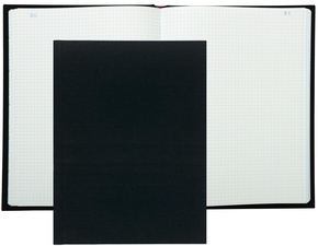 EXACOMPTA Standard-Registerbuch, 360 x 225 mm, 300 Seiten