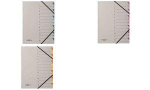"""PAGNA Ordnungsmappe """"Easy Grey"""", A4, 12 Fächer, grau / blau"""